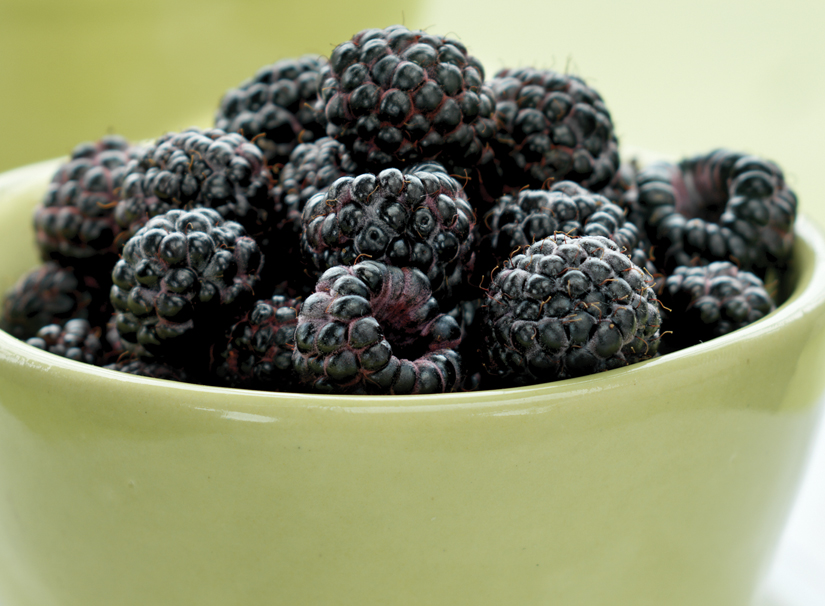 The Difference Between Black Raspberries And Blackberriesblack Raspberry Buzz